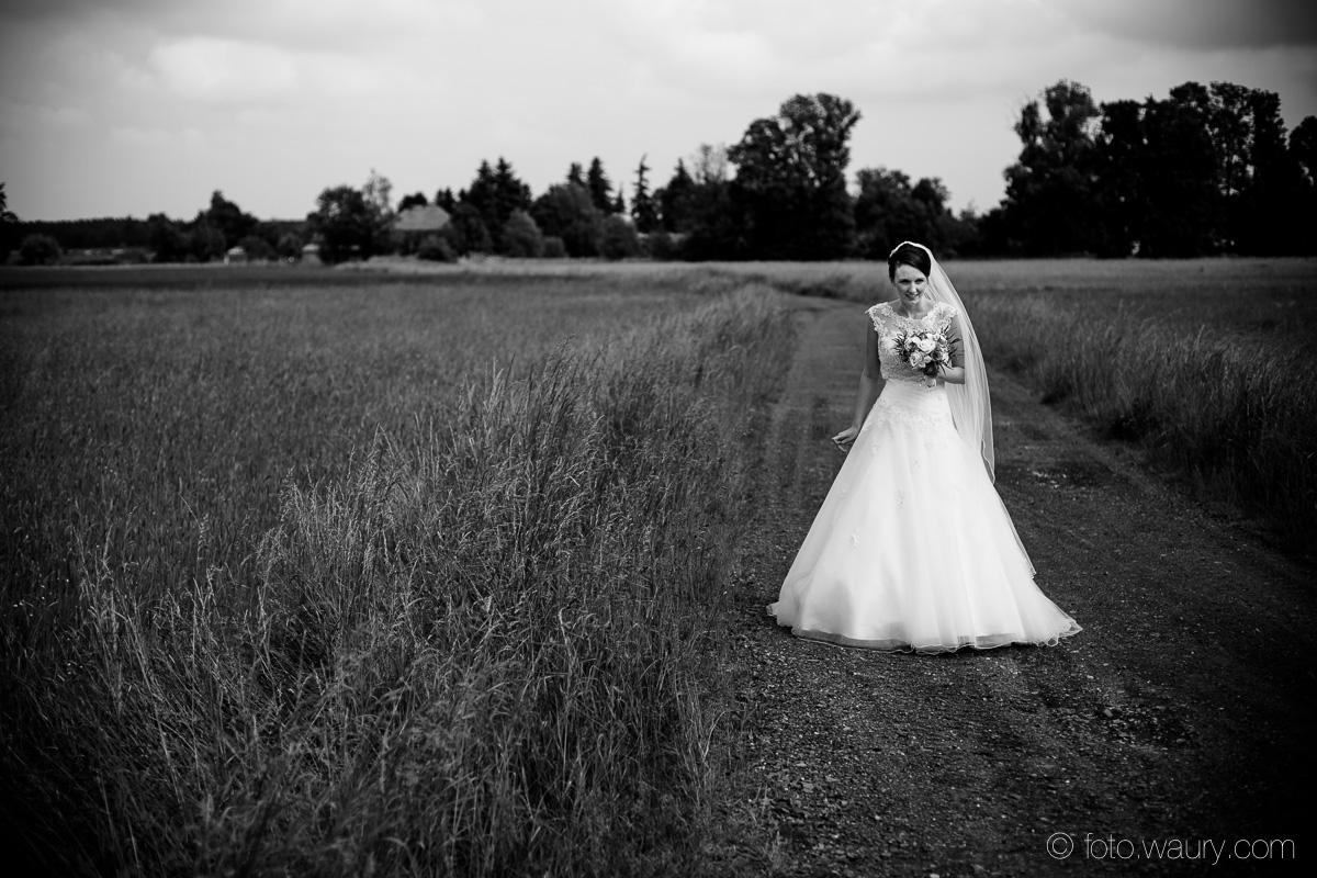 Hochzeit - Georg und Bianca-298
