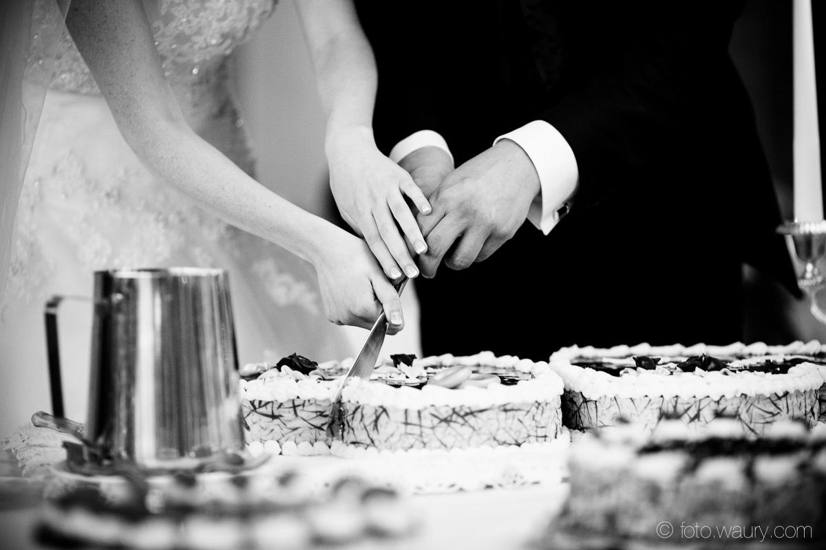 Hochzeit - Georg und Bianca-401
