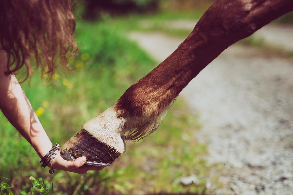 Fotoshooting - Elisabeth und Pferd-62