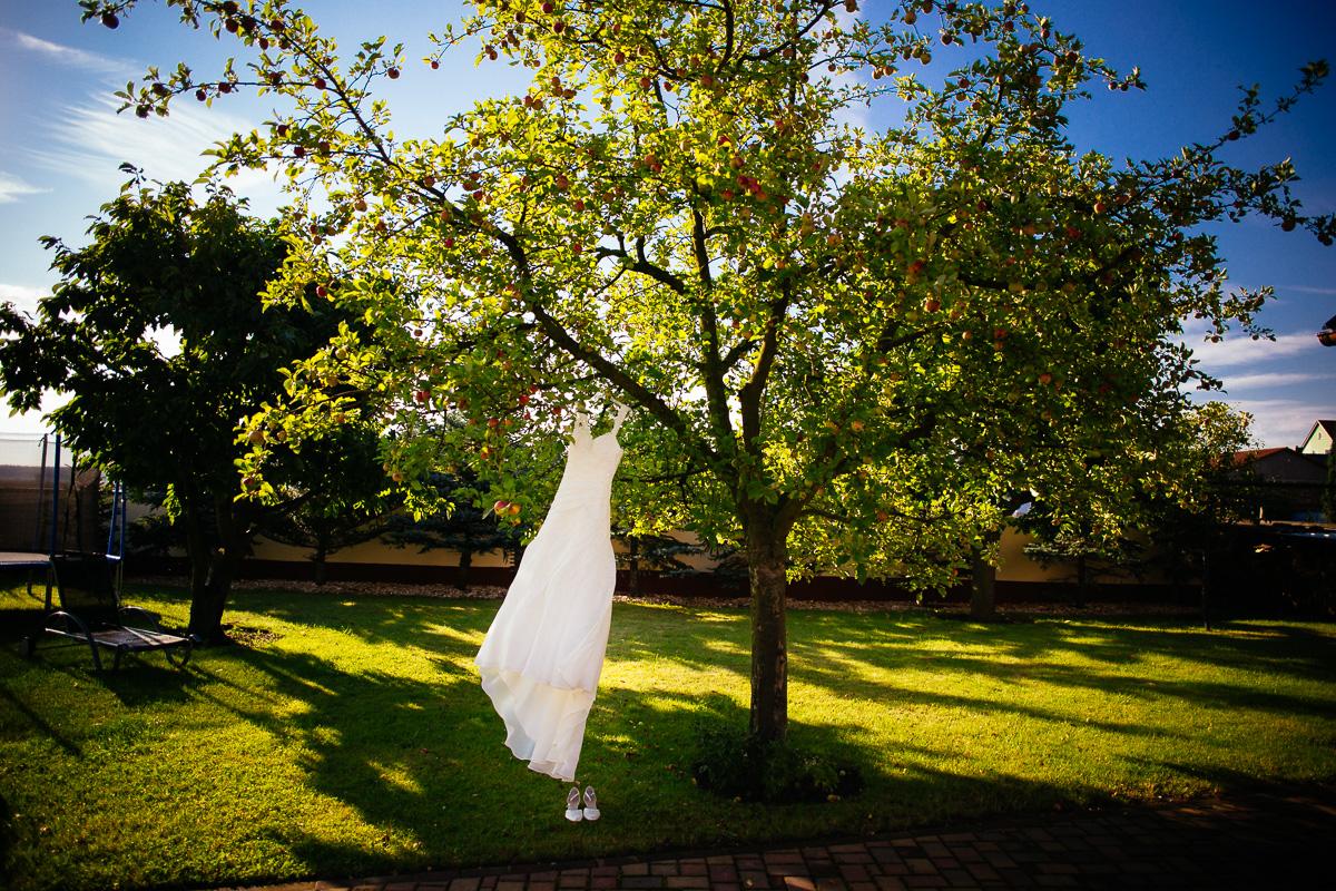 Hochzeitskleid hängt am Baum im Garten