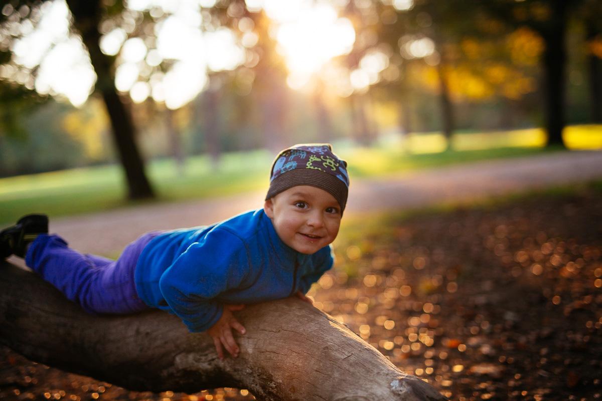 Junge klettert auf einen Baum