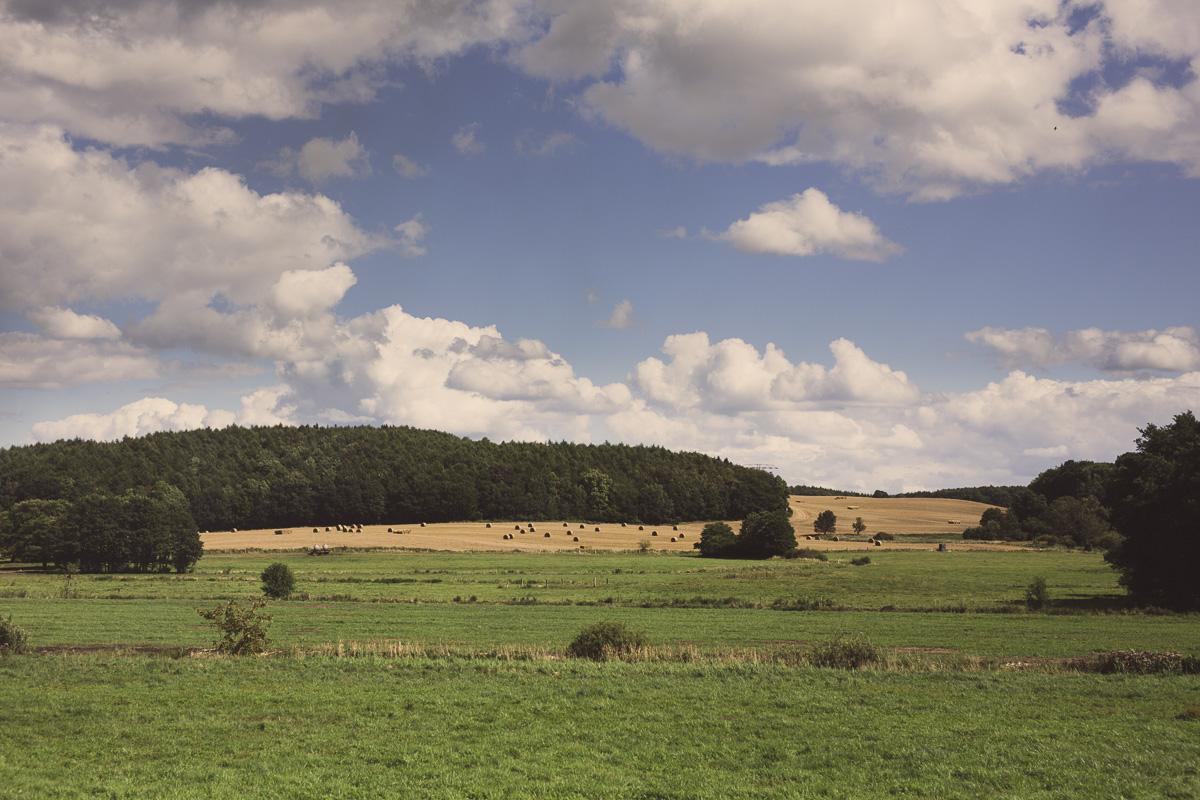 Wiese mit Waldgebiet und blauem Himmel mit Wolken