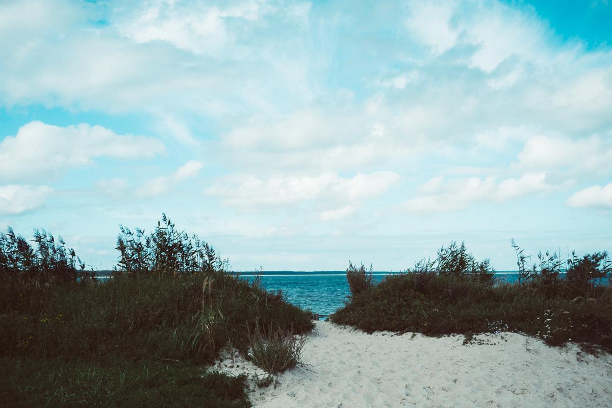 Dühne am Strand der Ostsee