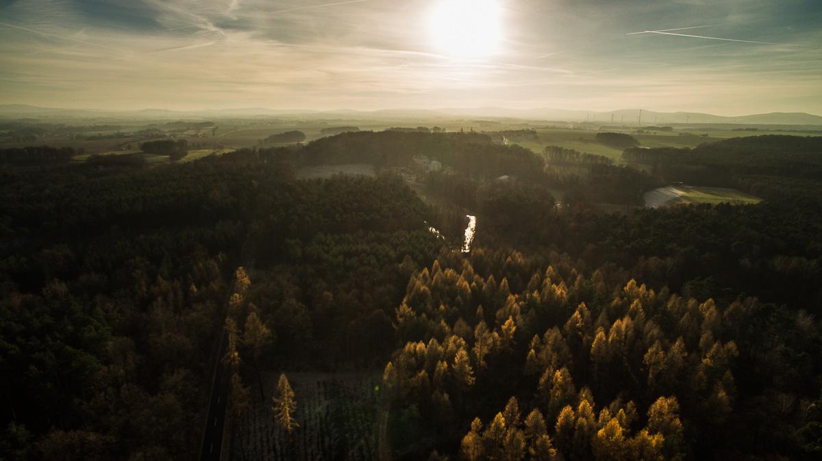 Waldlandschaft in der Lausitz am späten Nachmittag