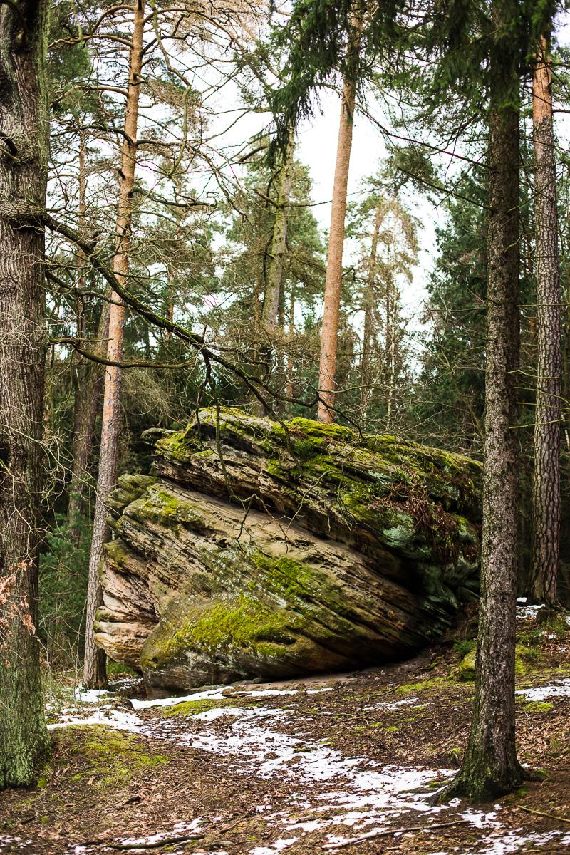 Großer Stein im Wald