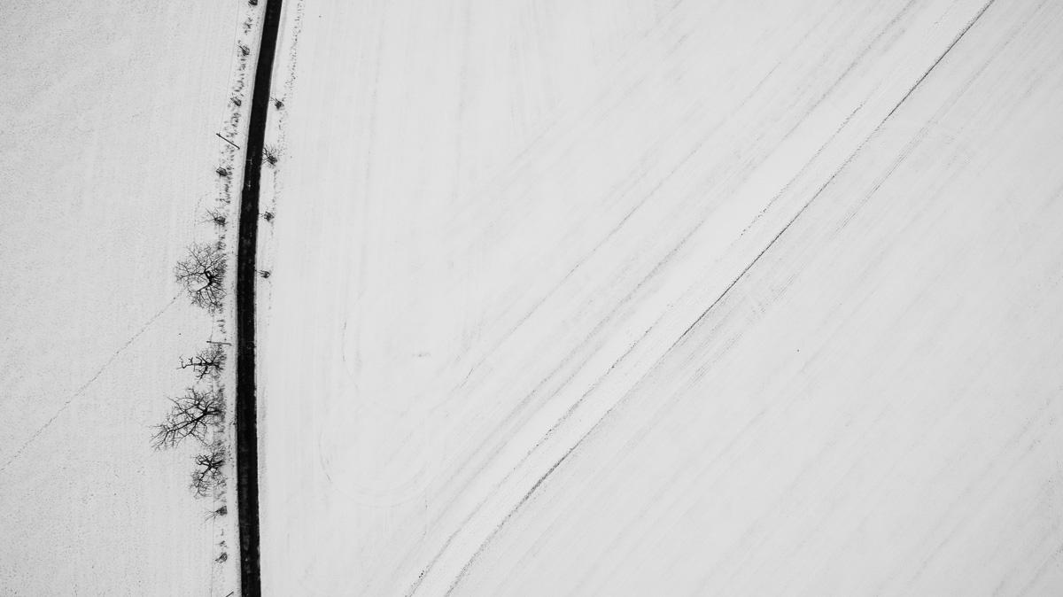 Winterlandschaft mit kargen Bäumen von oben
