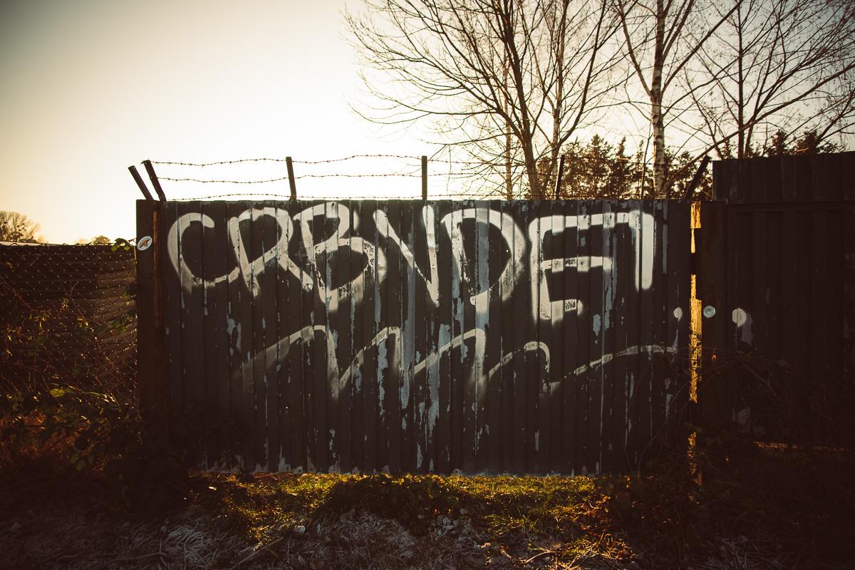 Graffiti am Elberadweg Dresden