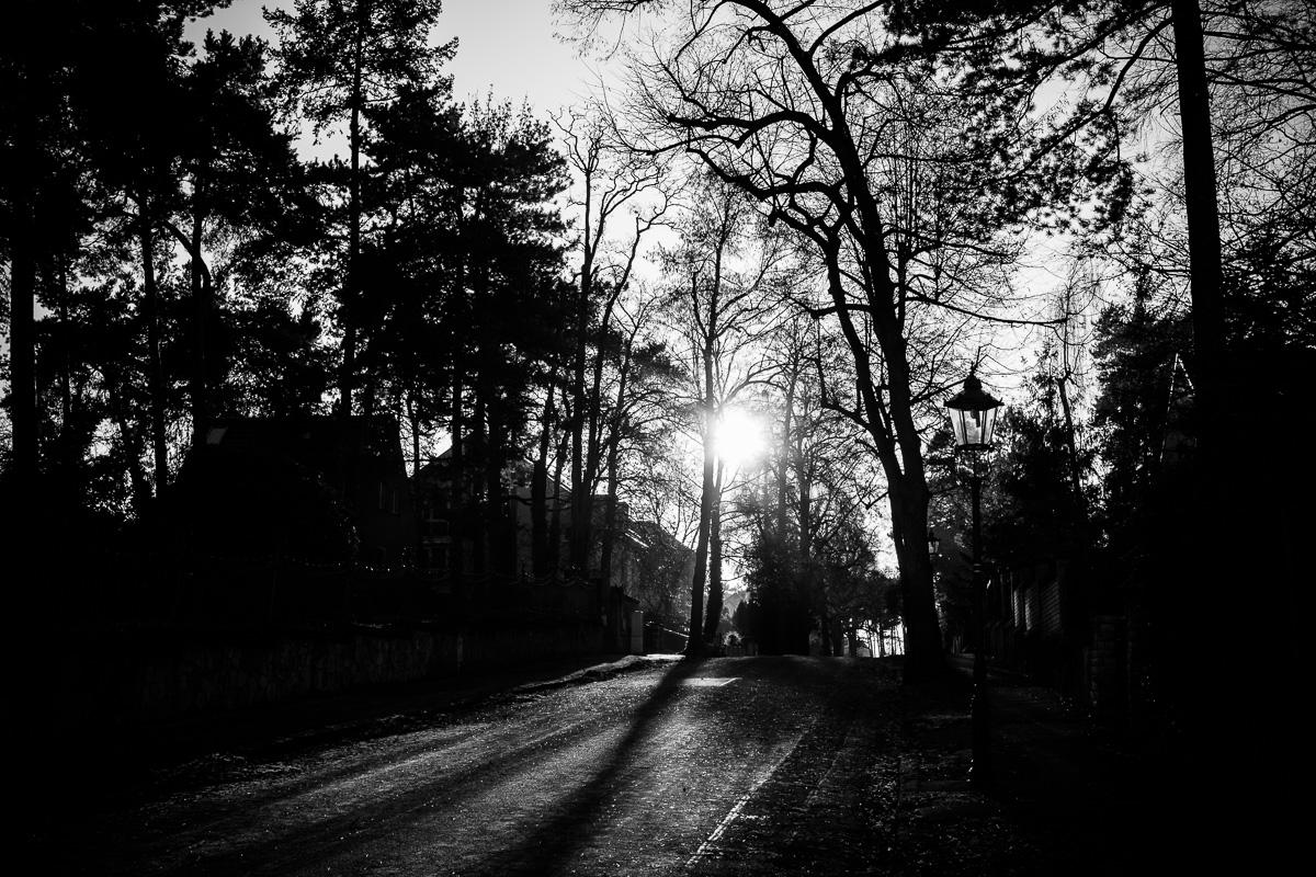Die Sonne wirft lange Schatten am Elberadweg in Dresden
