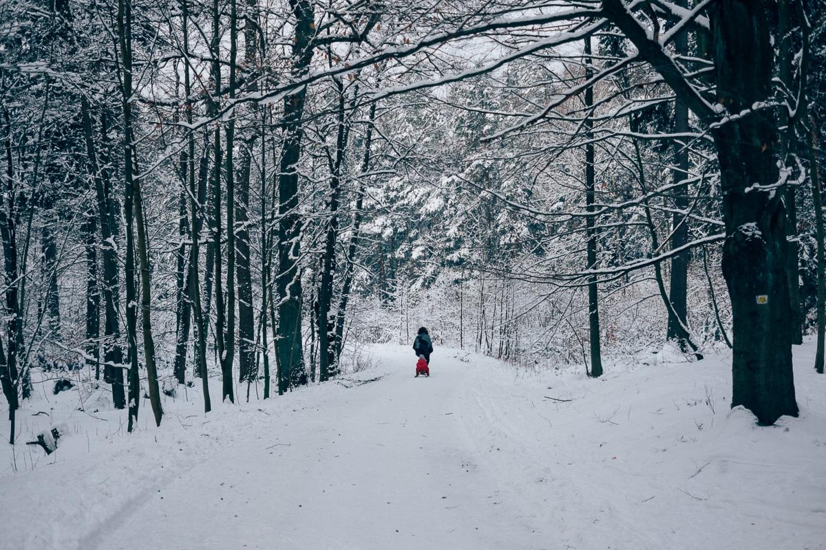 Mutter zieht ihre Tochter auf dem Schlitten durch den Wald der Dresdener Heide