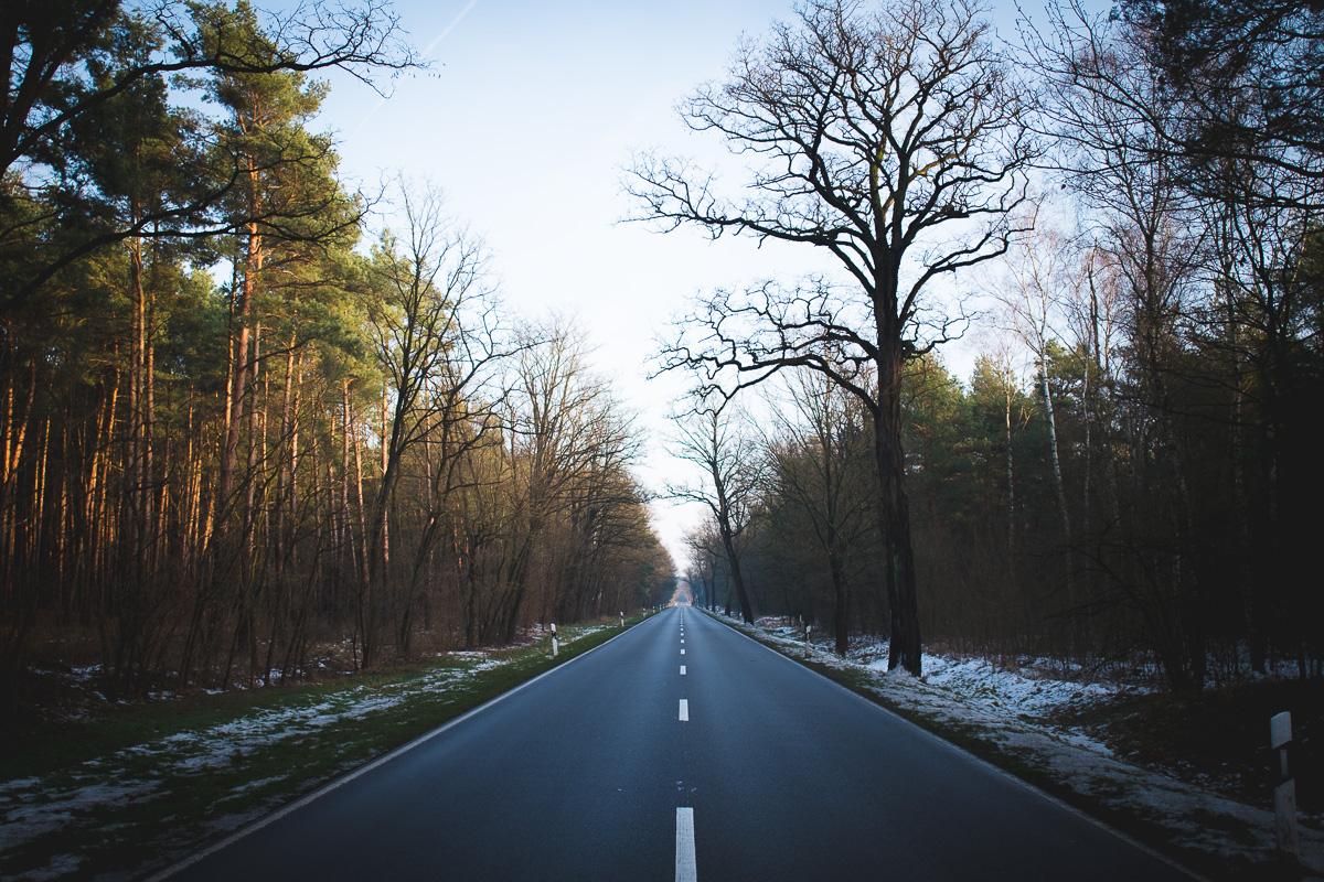 Eine einsame Landstraße im Spreewald