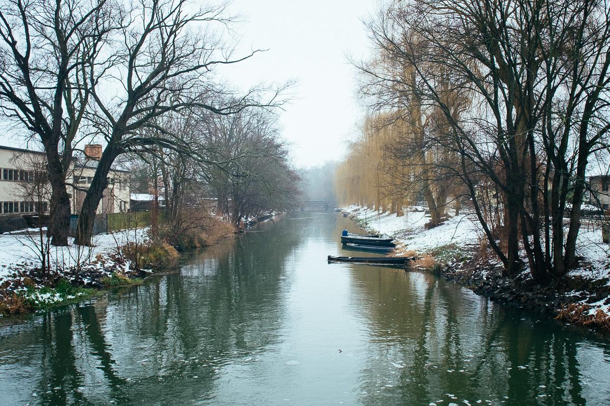 Käne liegen im Winter am Ufer am Spreewaldkanal