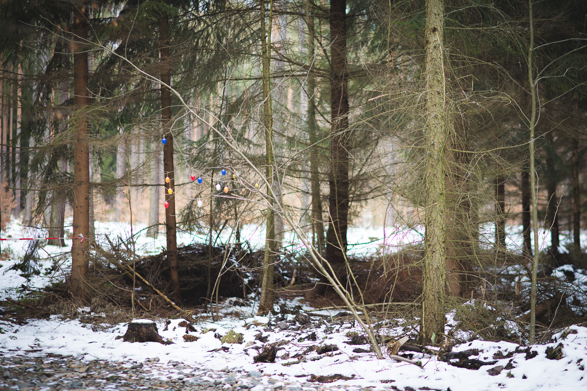 Ostereier und Flatterband hängen im Tharandter Wald
