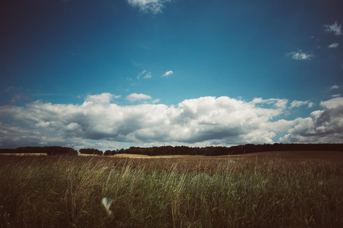 Feld mit angrenzendem Wald in der Lausitz