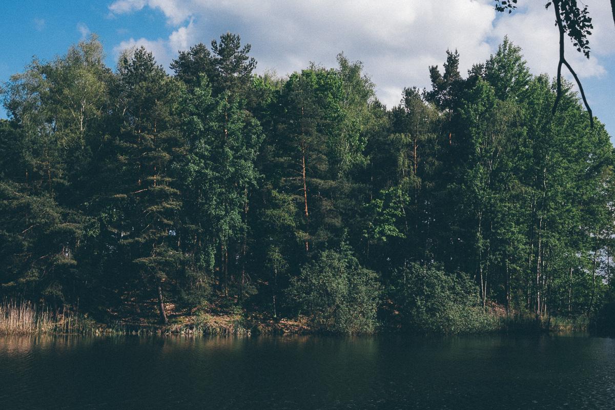 Bäume an einem Angelteich bei Ossling
