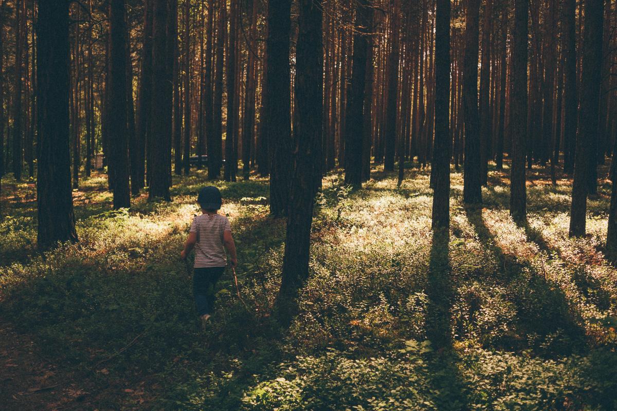 Ein Mädchen spaziert durch den Wald bei Ossling